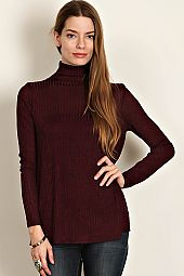 RIBBED KNIT TURTLE NECK TOP